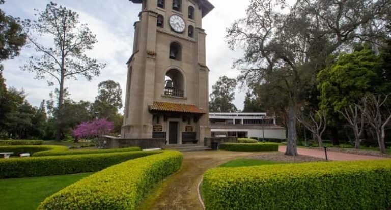 Mills college loan forgiveness options